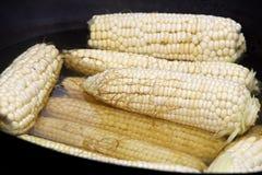 在黑罐的玉米棒子在火炉 免版税图库摄影
