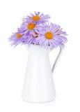 在水罐的蓝色春黄菊花 库存照片