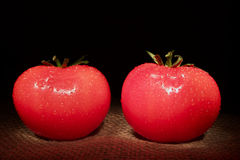 在黑背景的两个红色蕃茄 图库摄影