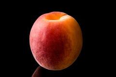 在黑背景的杏子 免版税库存图片