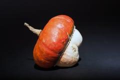 在黑背景的橙色和白色装饰南瓜 免版税库存图片
