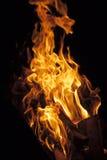 在黑背景的火焰 免版税图库摄影