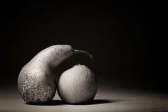 在黑背景的灰色果子 免版税库存照片
