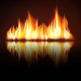 在黑背景的灼烧的火火焰 库存图片