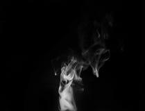 在黑背景的烟蒸汽 免版税库存照片