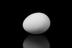 在黑背景的白鸡蛋 免版税库存图片
