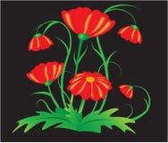 在黑背景的红色庭院花传染媒介 图库摄影