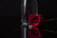 在黑背景的红色玫瑰 免版税库存照片