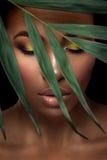 在黑背景的美丽的妇女画象 摆在与绿色叶子和闭合的眼睛的年轻非洲的女孩 华美组成 库存图片