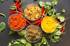 在黑背景的香料用红辣椒和绿色 免版税库存照片