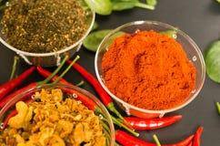 在黑背景的香料用红辣椒和绿色 免版税库存图片