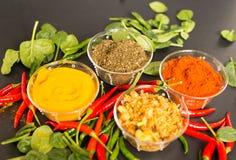 在黑背景的香料用红辣椒和绿色 库存图片