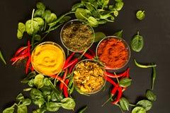 在黑背景的香料用红辣椒和绿色 库存照片