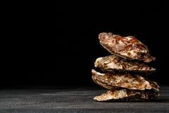 在黑背景的鲜美新鲜的闭合的牡蛎 可口热带海软体动物 消耗大的食物 复制空间 库存照片