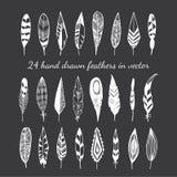 在黑背景的24根手拉的羽毛 库存照片