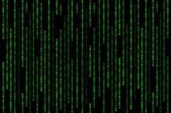 在黑背景的绿色二进制矩阵 库存照片