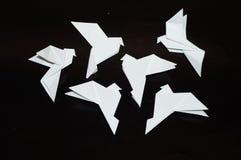 在黑背景的Origami鸽子 库存照片