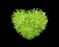 在黑背景隔绝的五颜六色的甜花花束心脏 特写镜头 免版税图库摄影