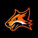 在黑背景隔绝的愤怒的狐狸体育俱乐部传染媒介商标概念 免版税库存图片