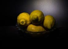在黑背景隔绝的静物画柠檬 免版税库存图片