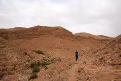 在以色列死海旅行吸引力的沙漠峡谷对游人 库存照片