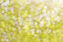 在黄色口气的五颜六色的夏天bokeh背景 免版税库存图片