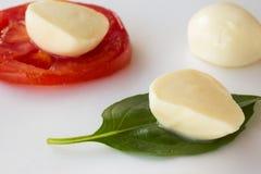 在绿色叶子和蕃茄的切的无盐干酪 免版税库存图片
