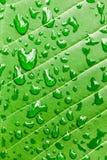 在绿色叶子宏指令背景的水下落 免版税库存图片