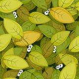 在绿色叶子无缝的Backgroun里面的动物眼睛 库存图片