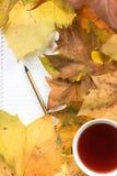在黄色叶子的笔记薄 库存图片