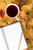 在黄色叶子的笔记薄 免版税库存照片