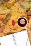 在黄色叶子的笔记薄 免版税库存图片