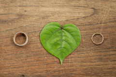 在绿色叶子的美好的金子婚戒有木背景 免版税图库摄影