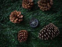 在绿色叶子背景旅行旅途b上的指南针和杉木锥体 库存图片