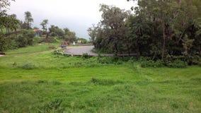 在绿色周围的柏油路 库存图片