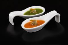 在绿色和红色蔬菜汤的鸟蛤 免版税图库摄影