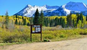 在黄色和绿色白杨木和积雪的山高山风景的自然痕迹在叶子季节期间 免版税图库摄影