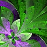 在绿色和紫色的美丽的分数维花。 免版税图库摄影
