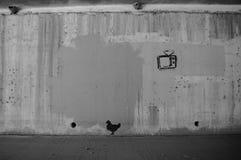 在绿色地带,斯科茨代尔, AZ的街道画 免版税库存照片