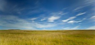 在绿色域的Cloudscape 免版税库存照片