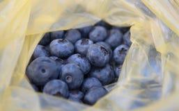 在黄色塑料袋的蓝色莓果 图库摄影