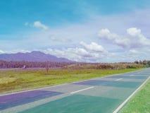 在绿色夏天领域的空的路 热带棕榈森林和山 桃红色和蓝色被定调子的照片 库存照片