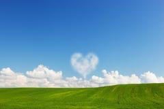 在绿色夏天领域风景上的心形的云彩 免版税库存图片