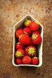 在绿色容器的微型草莓在金属板 免版税库存照片