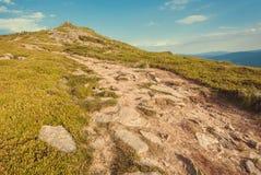 在绿色山上面的土路  与农村方式的自然风景在草 美好的风景在喀尔巴汗 免版税库存照片
