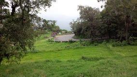 在绿色山周围的路 免版税图库摄影