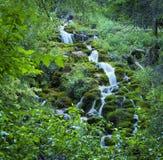 在绿色山的瀑布 免版税库存照片