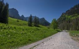 在绿色山谷的供徒步旅行的小道与走在道路的人 库存图片