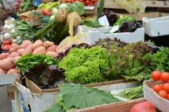 在绿色市场上的莴苣 库存图片