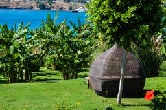 在绿色庭院的热带看法 免版税图库摄影
